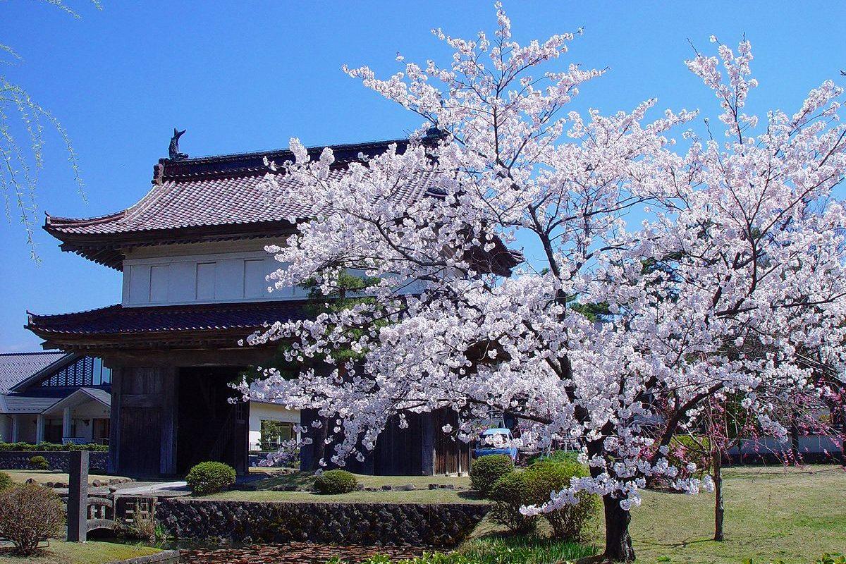 Matsuyama Historical Park2