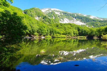 Tsuruma Pond