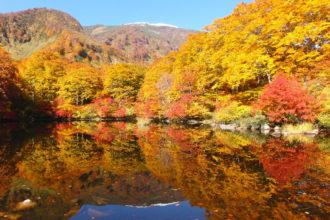 Tsuruma Pond4