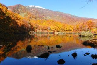 Tsuruma Pond2