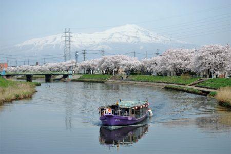 Mizuki Cruise Boat